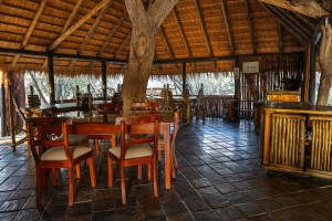 Tangala safari camp-
